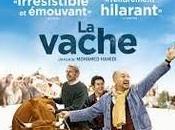 Film vache» Mohamed Hamidi (sorti 17/02/2016)