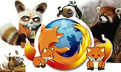 Shifu was Firefox!