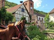 Sommant Horse Team patrimoine cheval