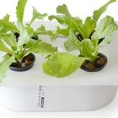 ELIOOO is an Instruction Book That Shows You How to Turn IKEA Parts Into a Hydroponic Garden System