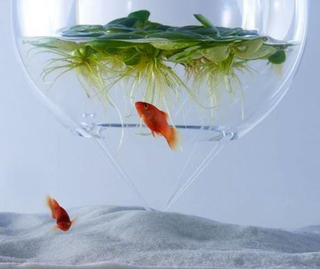 haruka-misawa-waterscape-fish-aquariums-09-818x690-768x648