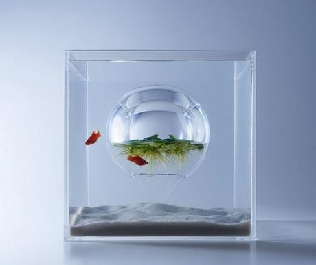 haruka-misawa-waterscape-fish-aquariums-04-818x690-768x648