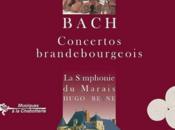 concertos brandebourgeois électrisés