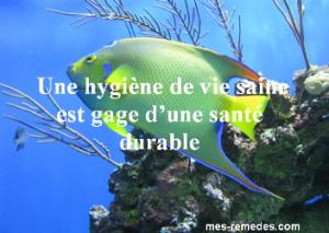 rp_image-sante-durable2-300x213.png