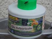 arboricole contre chenilles, pucerons fourmis