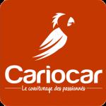 Logo Cariocar Rouge Euro 2016