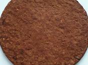 cookie moelleux diététique végan cacao coco muesli hyperprotéiné (sans beurre oeuf sucre lait, riche fibres)