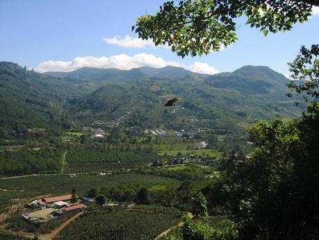 Des plages d'exception à découvrir au Costa Rica