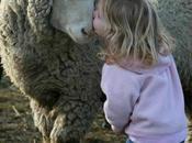 Touché compassion