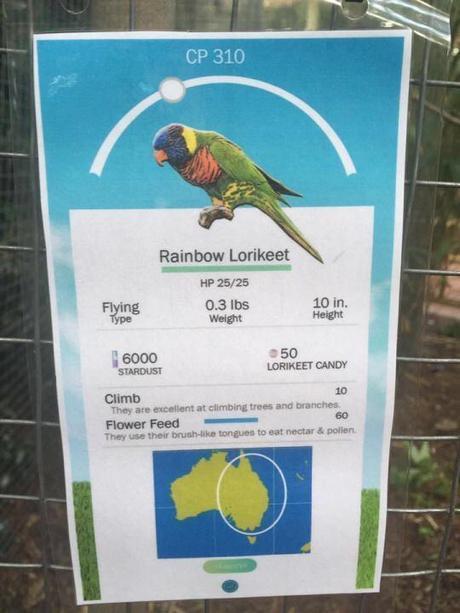 Ce zoo a eu l'idée de présenter ses différents animaux à la sauce POKÉMON GO !