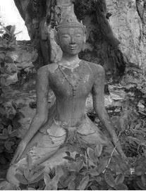 www.le-fil-du-yoga.com