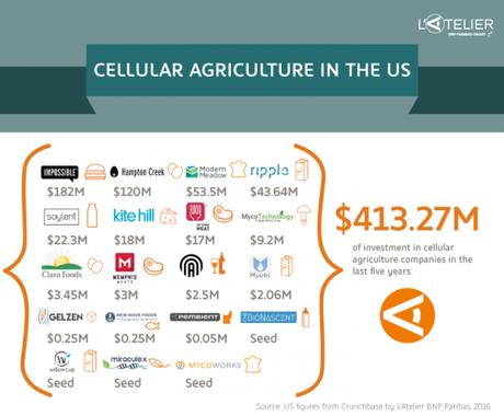 Les investissements dans l'agriculture cellulaire en pleine croissance