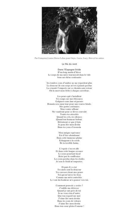 Poème Pour Le Galgo De Françoise Louise Borsa Lebas Paperblog