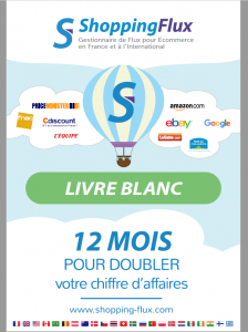 Le Livre Blanc Shopping Flux (40 pages)