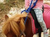 balade poney