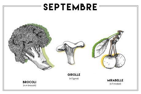 Septembre, illustration Aloÿse M pour ADC