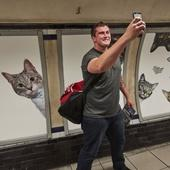 We just replaced 68 Tube adverts with pictures of cats. Here's why.