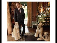 Hiddleston star nouvelle campagne Gucci Tailoring...