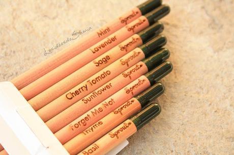Découverte : Des crayons au nom rigolo et écolos. Sprout !