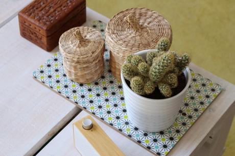 cactus panier boîte décoration