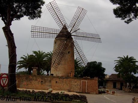 Moulin de Vent fariner d'En Sopa