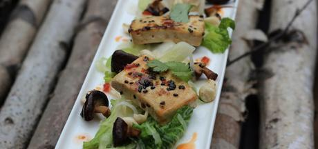 Les différents types de tofu