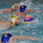 La chronique water-polo d'Alex Camarasa #2 : début du championnat ce week-end