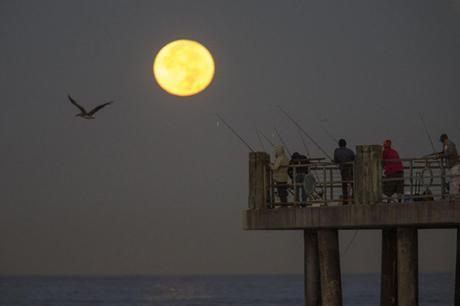 Redondo Beach, Californie - © AFP