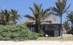 Île Maurice: il loue un bungalow les pieds dans l'eau et décide de s'y installer…