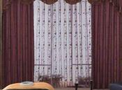 Living Room Drapes