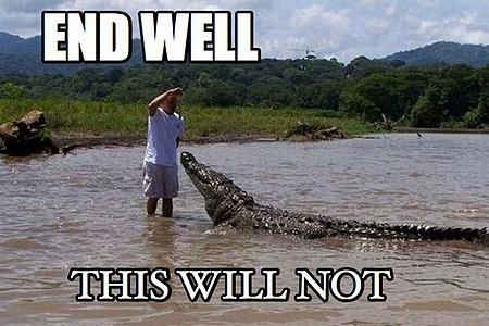 this-will-not-end-well-crocodile