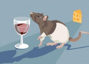 L'ALCOOL fait-il grossir ?  – Pharmacology, Biochemistry and Behavior