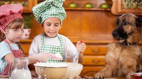 cookies pour chien et enfant