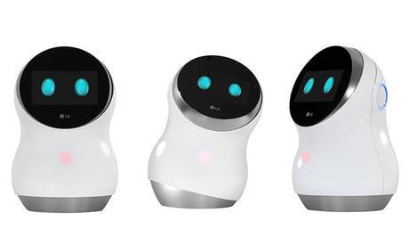 Hub Robot LG