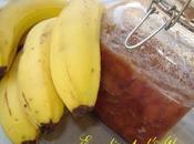 saga bananes