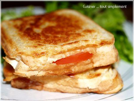 croque_thon_moutarde_2