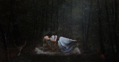 Il était une fois… la belle au bois dormant, 2015