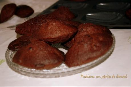 Madeleines aux double chocolat