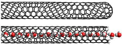 Illustration of a single-walled carbon nanotube filled with water