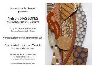 Galerie Marie_Laure de l'Ecotais exposition Nelson DIAS LOPES 9 Février au 4 Mars 2017