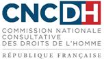 Avis de la CNCDH sur la loi relative à la sécurité publique