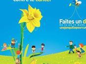 Jonquille pour Curie 2017 mobilisons-nous contre cancer