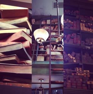 Visite du Parc à thèmes « Wizarding World of Harry Potter » de Floride