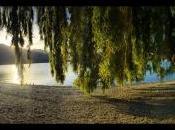 Nouvelle-Zélande: Rêve bout monde