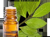 huiles essentielles indispensables contre l'anxiété