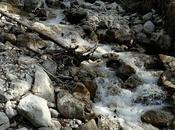 Belles promenades tyroliennes: l'alpage Puit (Puitalm) départ vallée Leutasch