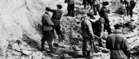 Terres de sang L'Europe entre Hitler et Staline - Timothy Snyder