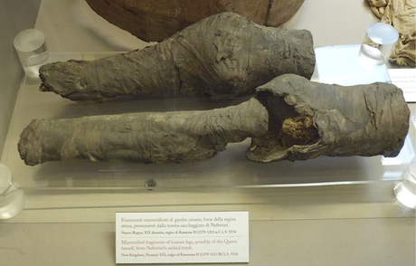 Des jambes momifiées appartiendraient à la reine égyptienne Néfertari