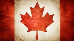 Rapport sur 8 ans et 146 jours du portefeuille modèle MIA Canadien