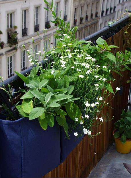 Preparons L Ete Un Balcon Une Idee Jardiniere